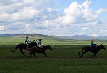 220px-Three_Naadam_riders