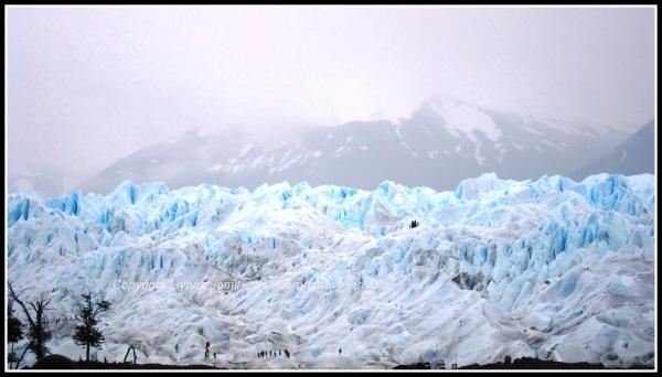 Argentina 2010 410