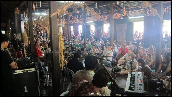 Rainforest Music Festival 059