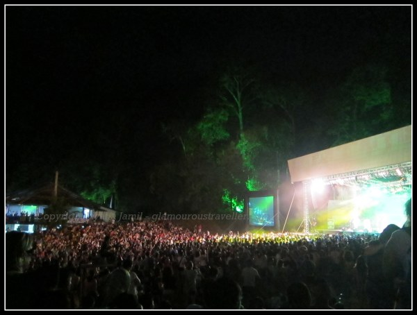 Rainforest Music Festival 113